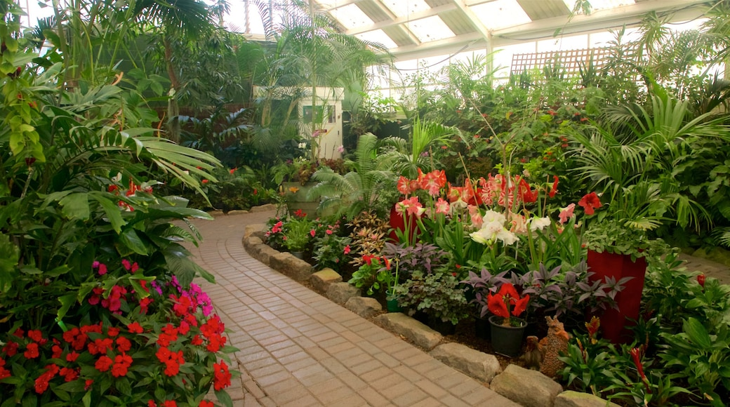 Botanica & Cafler Park showing flowers, a garden and interior views