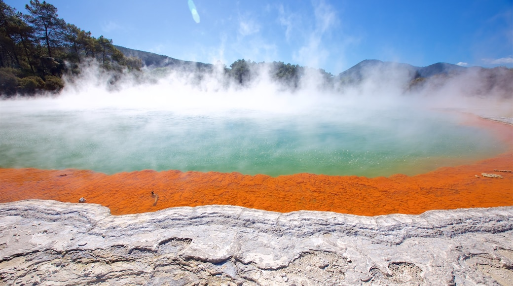 Wai-O-Tapu Thermal Wonderland featuring a hot spring and mist or fog