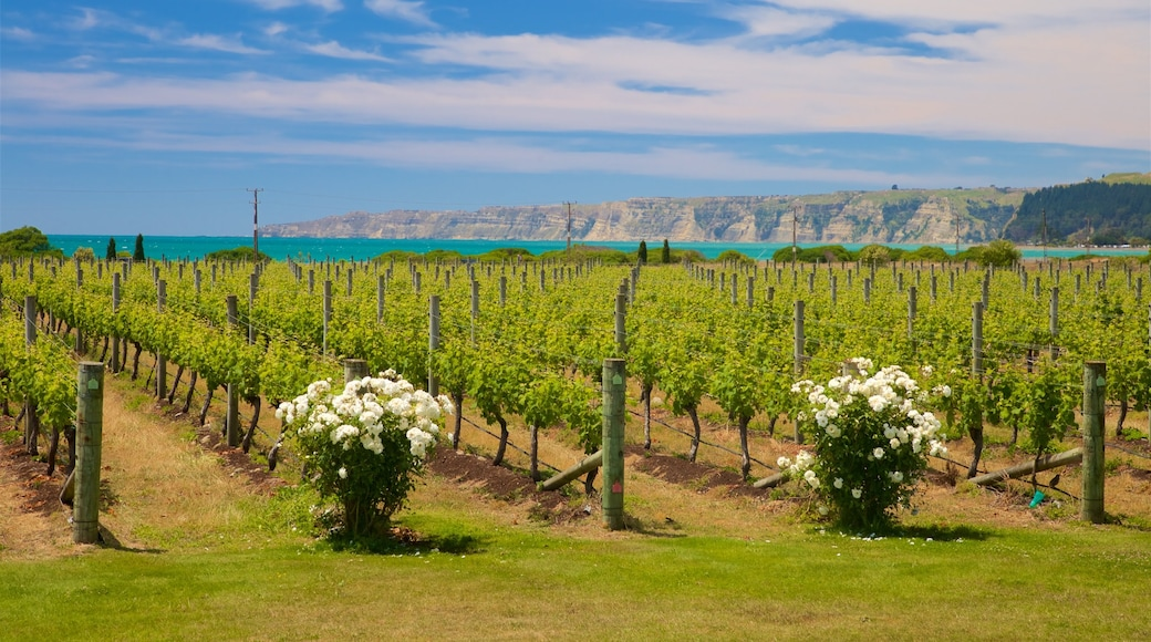 Elephant Hill Estate Winery featuring farmland and flowers