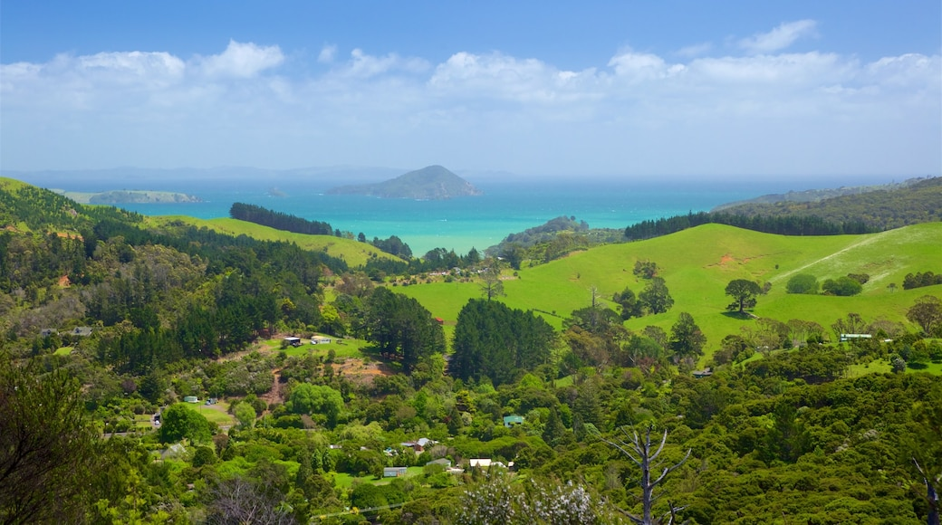 Driving Creek Railway showing landscape views, tranquil scenes and general coastal views