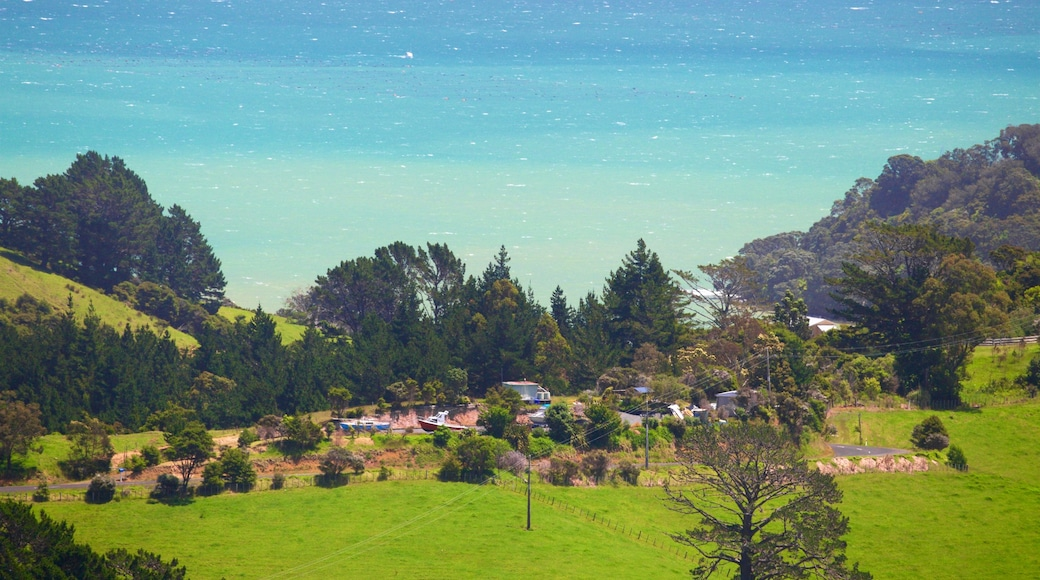 Driving Creek Railway which includes general coastal views, landscape views and tranquil scenes