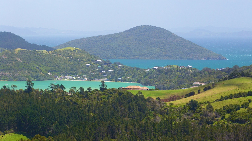 Driving Creek Railway showing general coastal views, tranquil scenes and landscape views