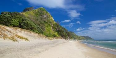 Mangawhai Heads Beach featuring general coastal views and a sandy beach