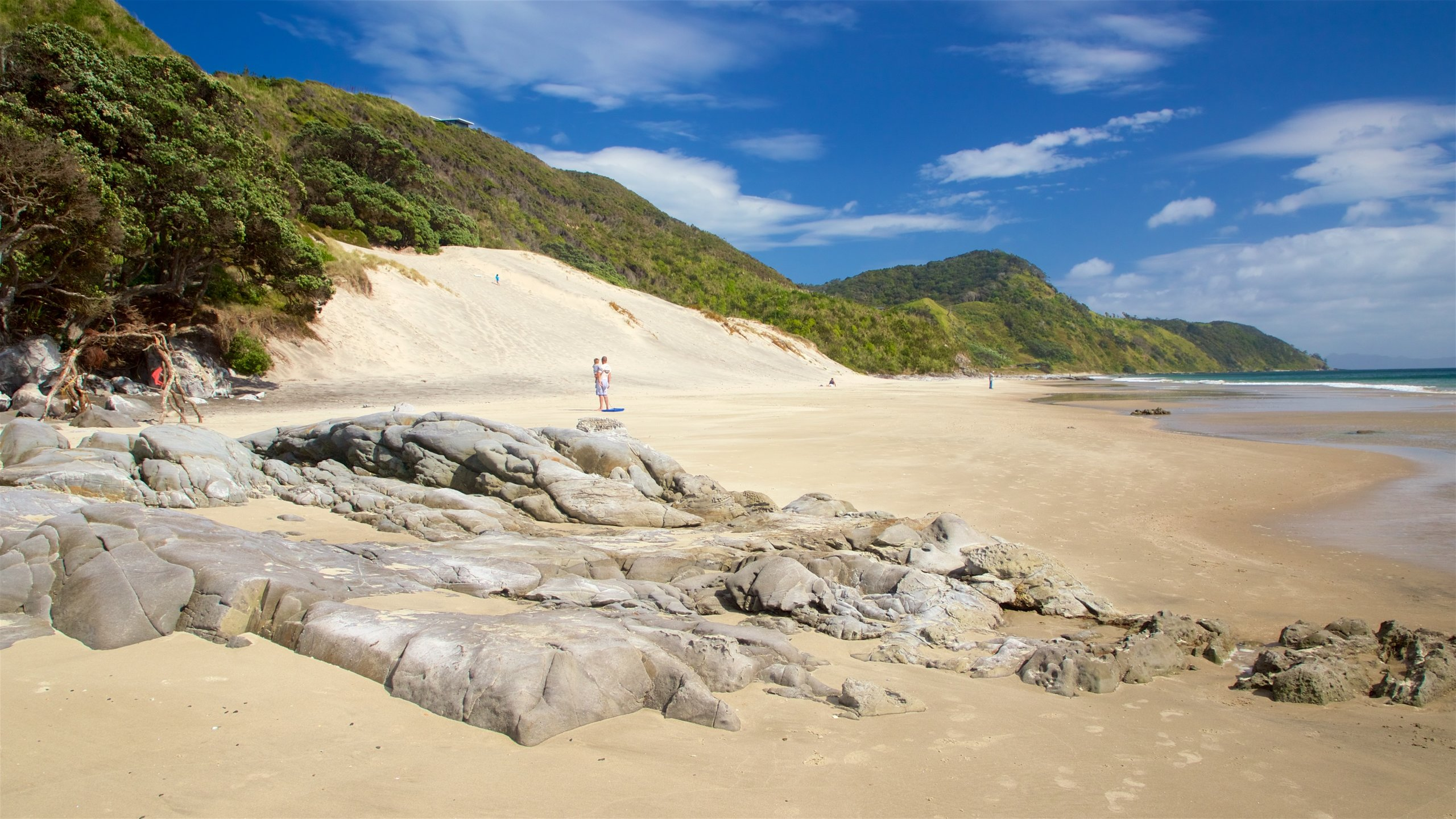 Mangawhai Heads Beach, Mangawhai, Northland, New Zealand