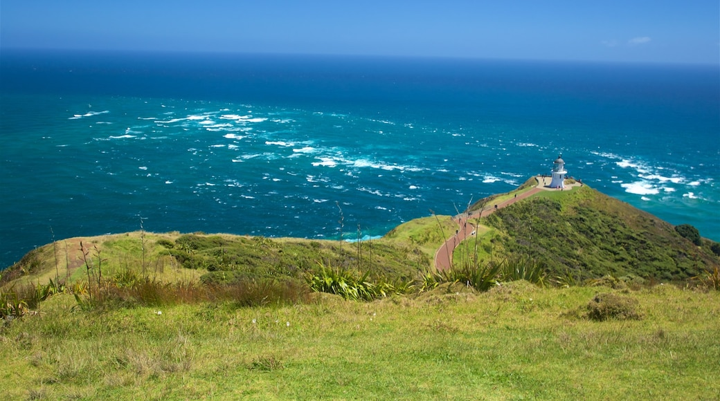 Cape Reinga featuring views, general coastal views and a lighthouse