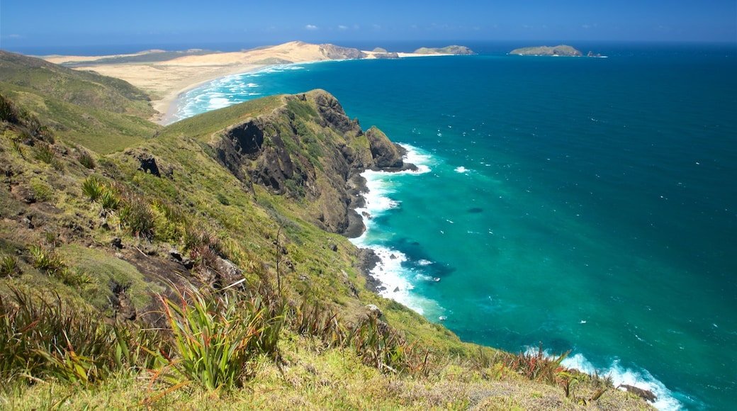 Cape Reinga showing rocky coastline and general coastal views