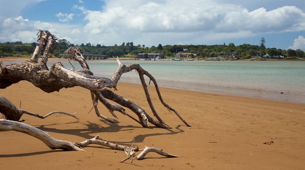 Paihia Beach which includes a sandy beach and general coastal views