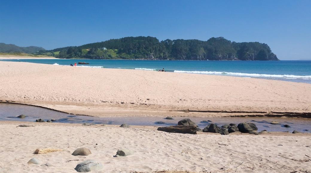 Hot Water Beach showing a sandy beach and general coastal views