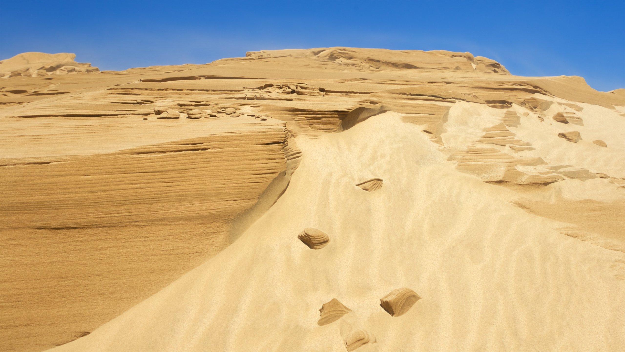 steep sand dune pursued - HD2560×1440
