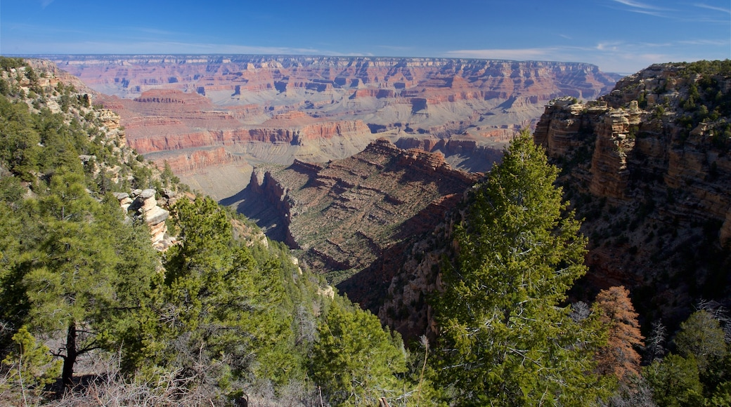 Grand Canyon which includes tranquil scenes and a gorge or canyon
