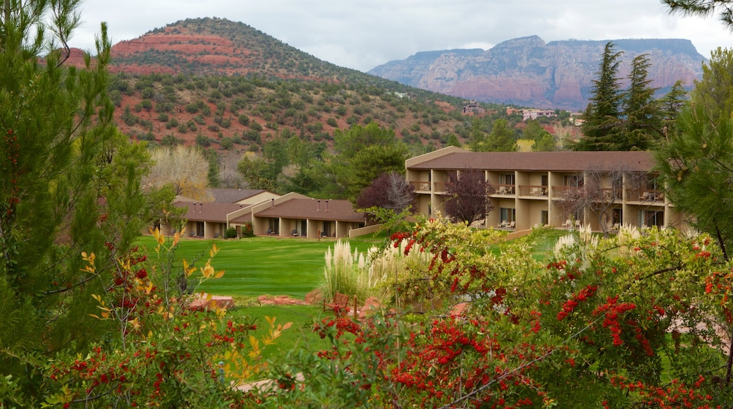 Sedona which includes a garden, tranquil scenes and wild flowers