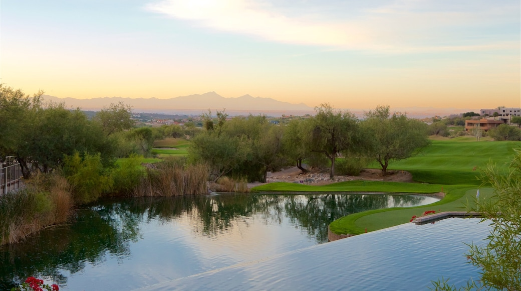 Tucson showing tranquil scenes, a lake or waterhole and a sunset