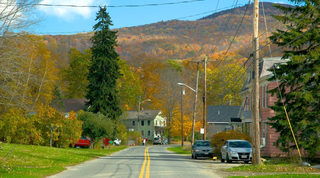 Hancock showing a small town or village and tranquil scenes