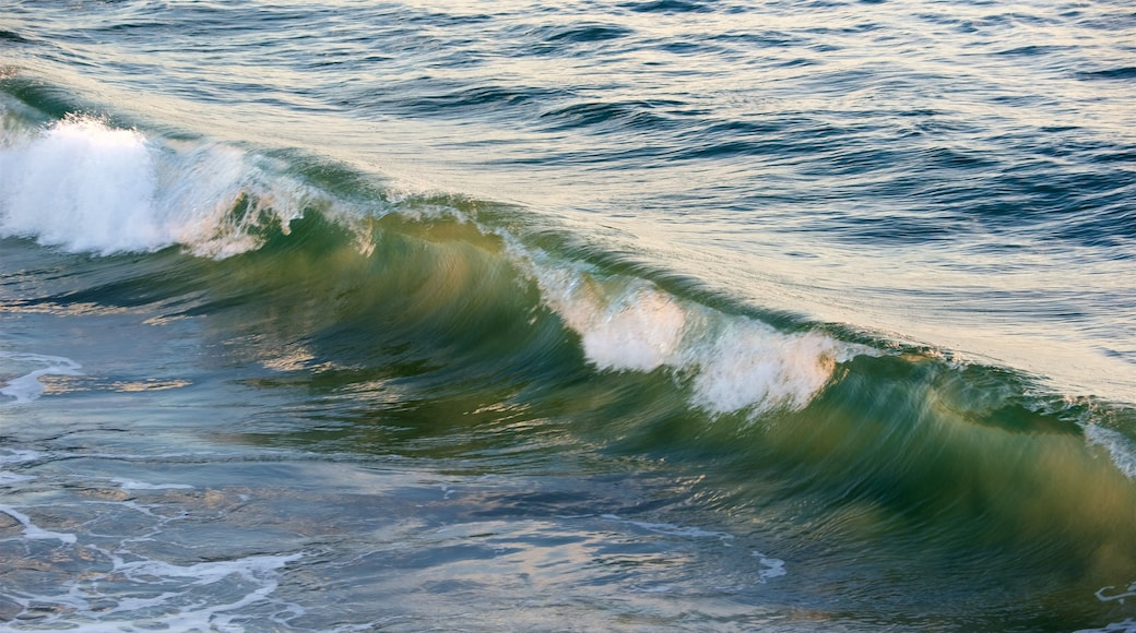 Santa Monica Beach das einen allgemeine Küstenansicht und Wellen