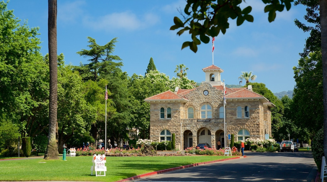 Sonoma Plaza showing a park