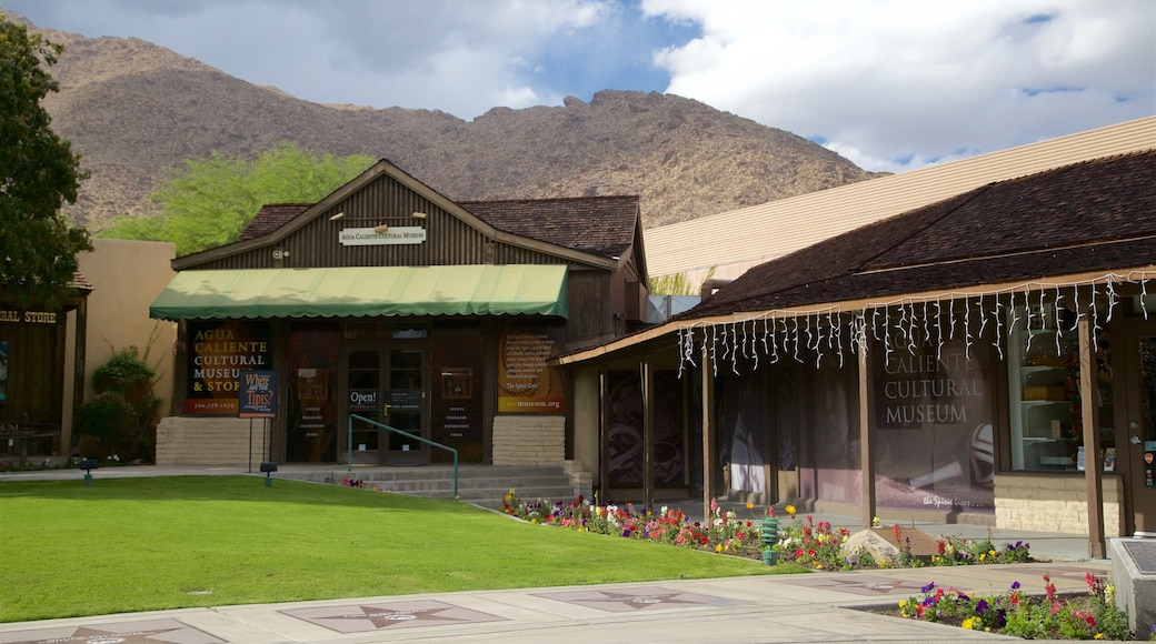 Agua Caliente Cultural Museum
