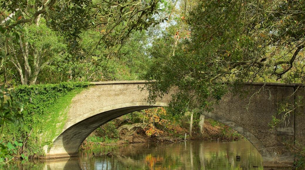 สวนสาธารณะออดูบอน แสดง สะพาน และ แม่น้ำหรือลำธาร