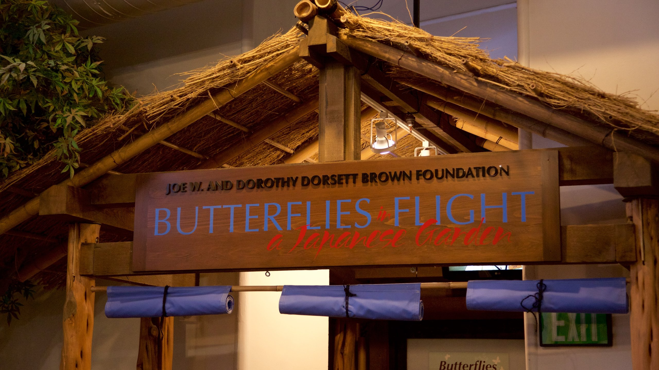 Audubon Insectarium which includes signage and interior views