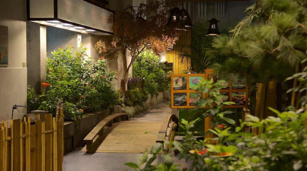 Audubon Insectarium featuring a park and interior views
