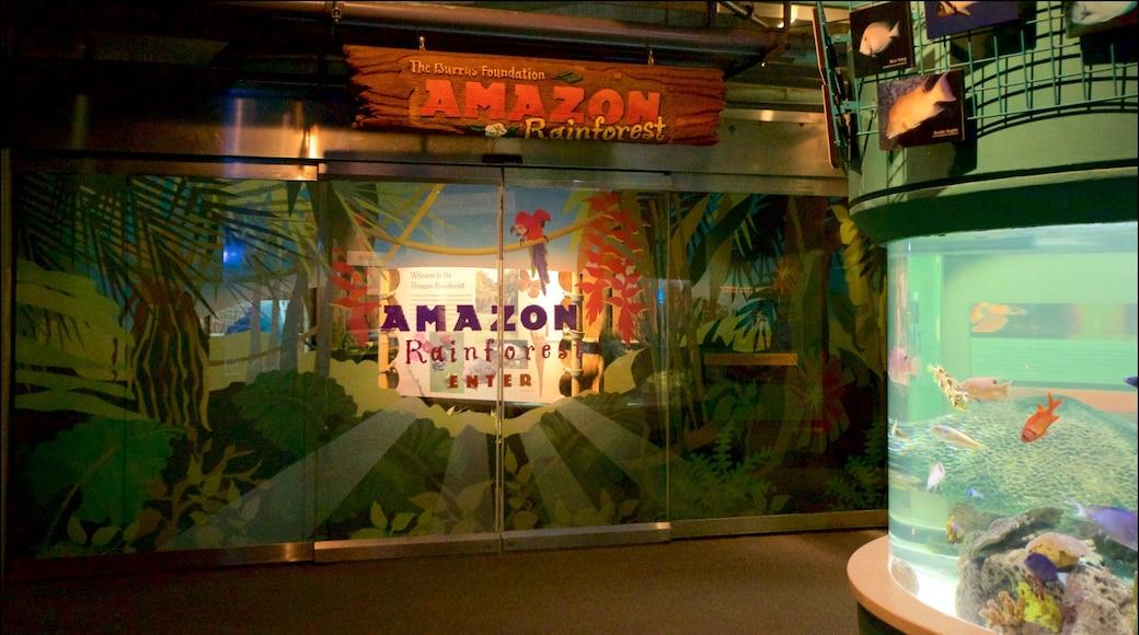 Audubon Aquarium of the Americas featuring interior views and signage