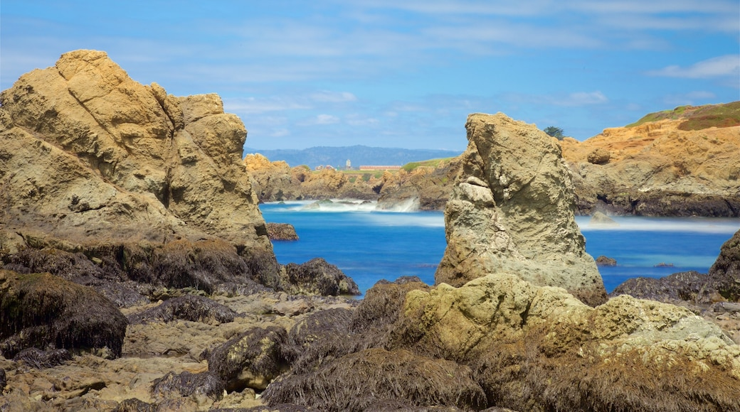 Glass Beach showing general coastal views and rocky coastline