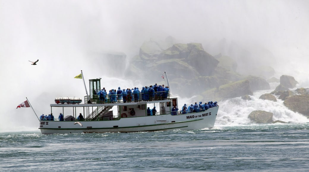 Maid of the Mist featuring mist or fog and a ferry