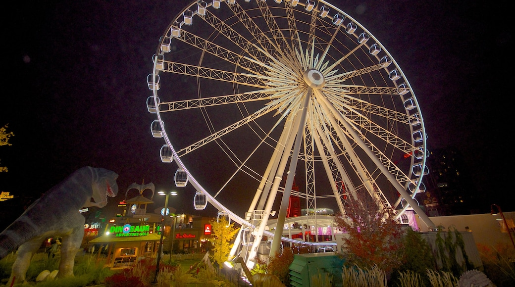 Niagara SkyWheel which includes a garden, night scenes and rides