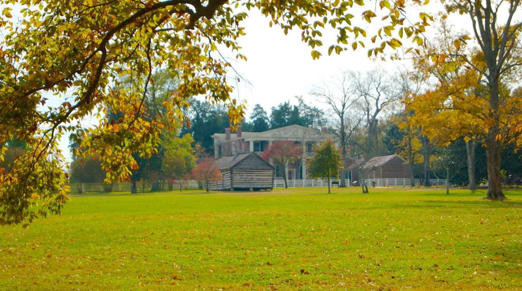 The Hermitage featuring fall colors, a house and a garden