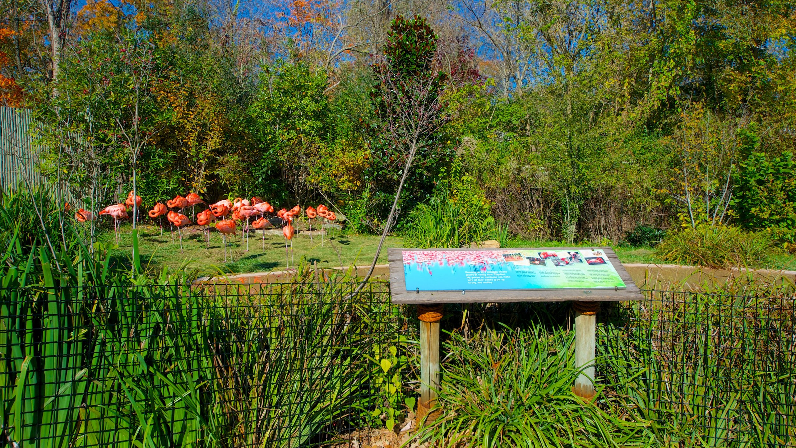 Nashville Zoo, Nashville, Tennessee, United States of America