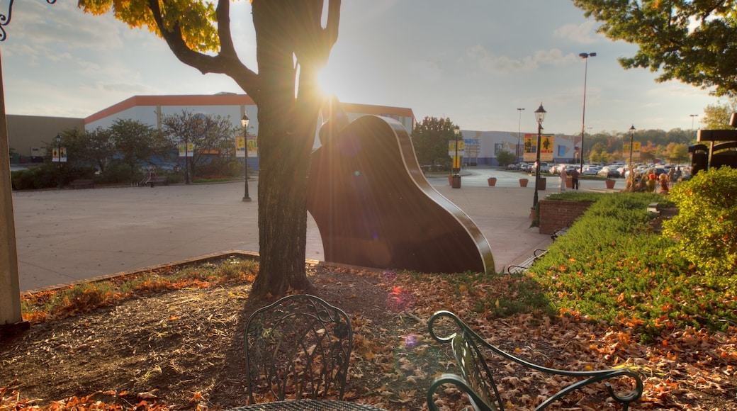 Grand Ole Opry featuring outdoor art, a sunset and a garden