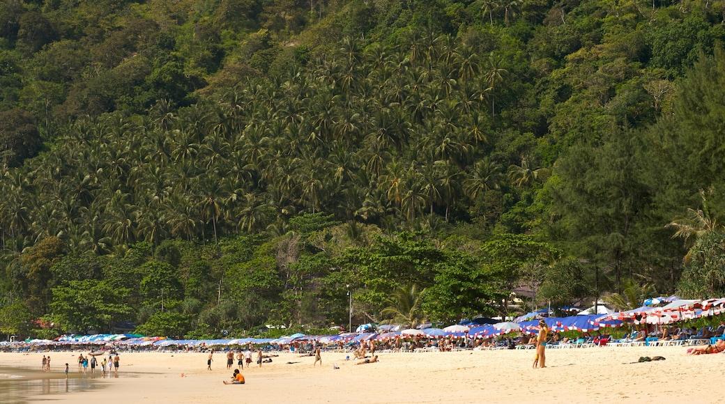 หาดในหาน ซึ่งรวมถึง หาดทราย, ทิวทัศน์เขตร้อน และ วิวทิวทัศน์