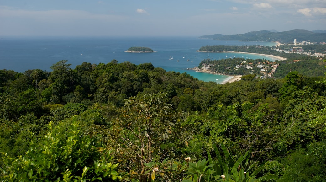 Patong showing general coastal views, tropical scenes and landscape views