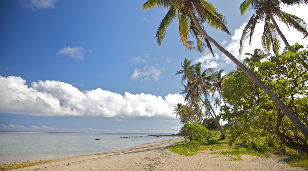 Coral Coast which includes a beach and tropical scenes