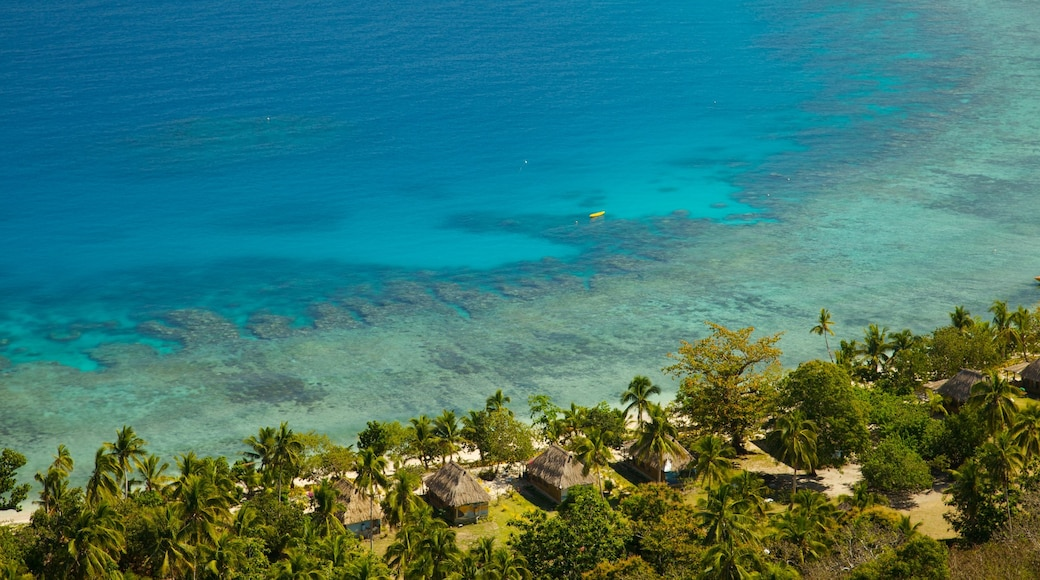 Fiji which includes tropical scenes, a coastal town and general coastal views