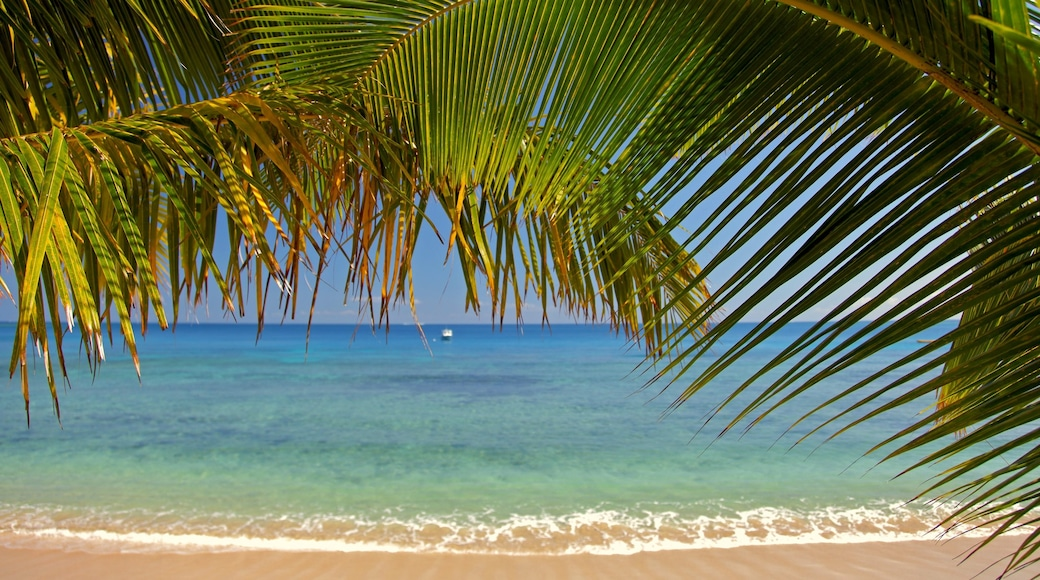 Fiji which includes landscape views, tropical scenes and a beach