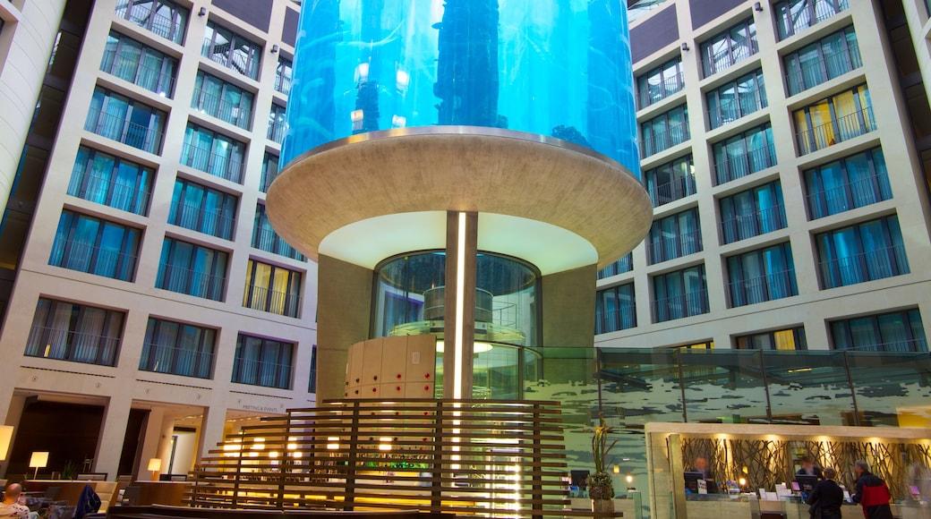 Aquadom bevat een stad, moderne architectuur en zeedieren