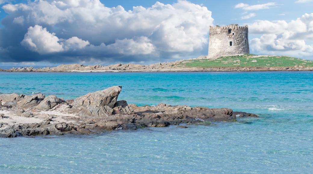 Stintino caratteristiche di architettura d\'epoca e vista della costa
