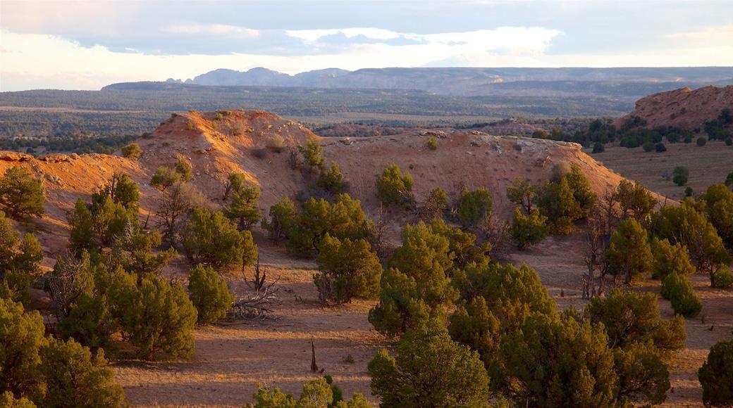 Kodachrome Basin State Park featuring desert views and landscape views