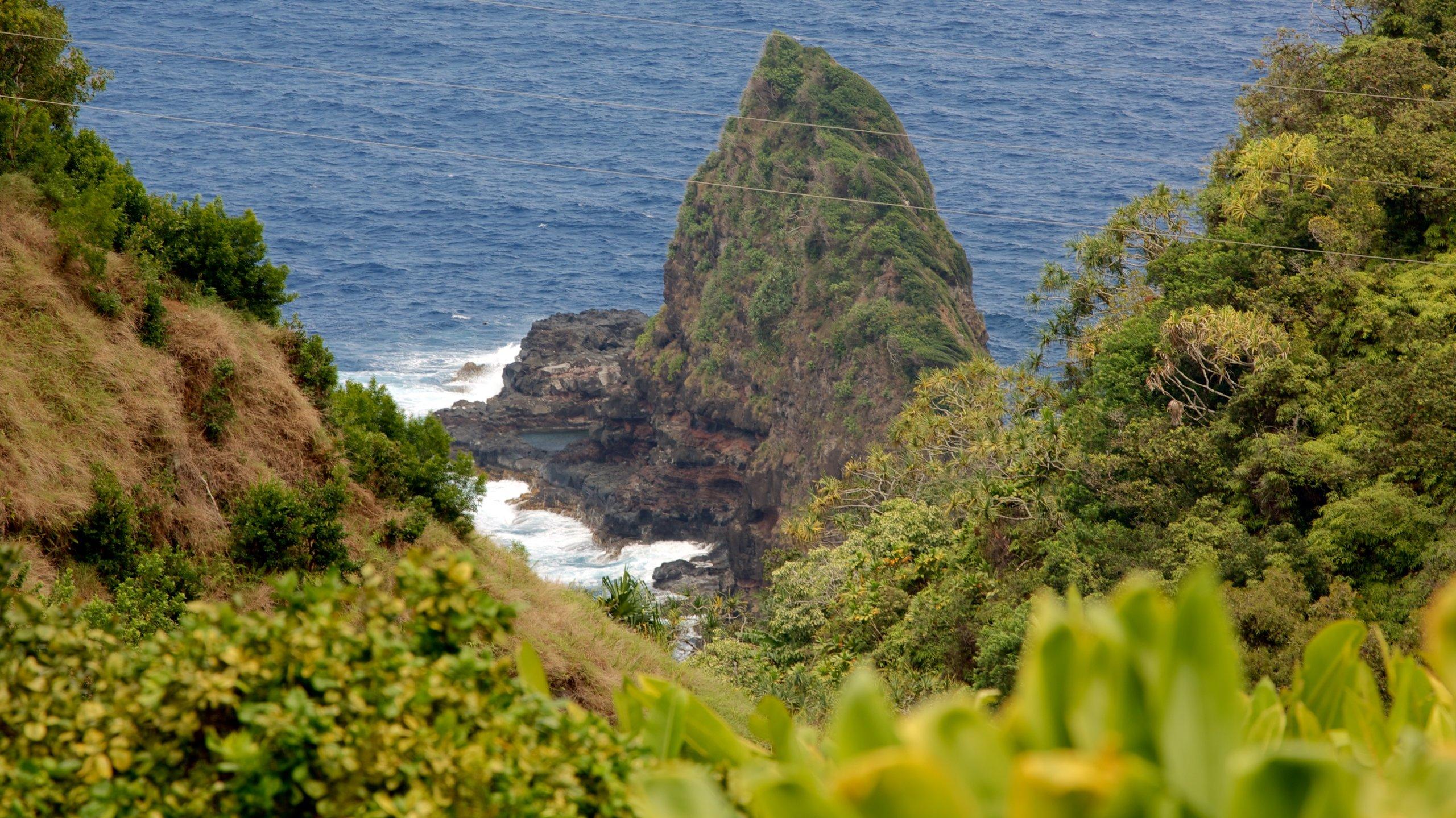 Garden of Eden Arboretum johon kuuluu yleiset rantanäkymät ja kallioinen rannikko