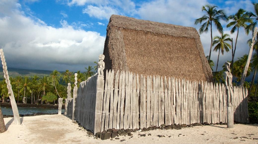 Pu\'uhonua o Honaunau National Historical Park featuring tropical scenes and general coastal views