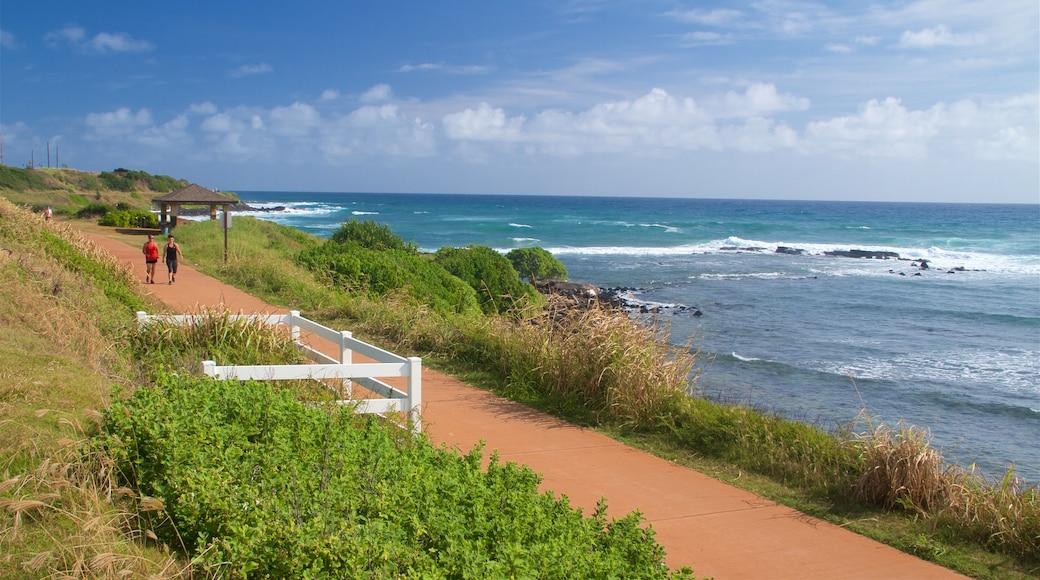 Ke Ala Hele Makalae East Shore Beach Path showing general coastal views and hiking or walking as well as a couple