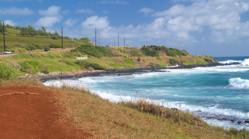 Ke Ala Hele Makalae East Shore Beach Path showing general coastal views, surf and rugged coastline