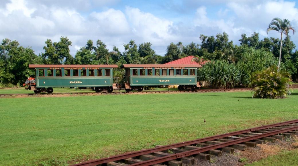 Kilohana Plantation featuring a garden, railway items and heritage elements