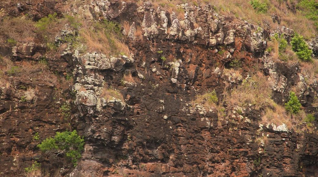 Opaekaa Falls featuring a gorge or canyon