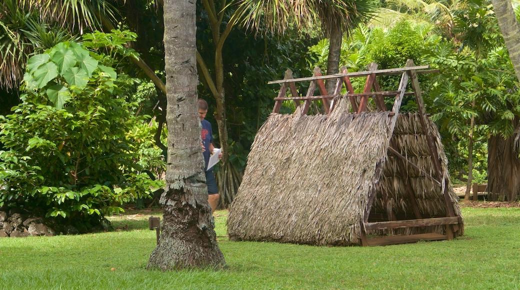 Kamokila Hawaiian Village featuring indigenous culture and a garden