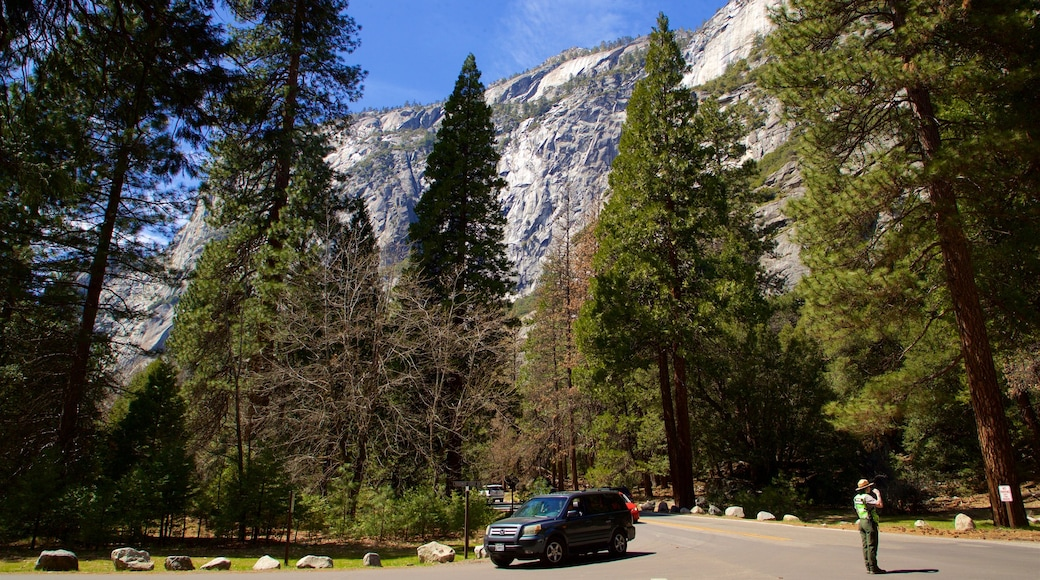 Yosemite Lodge Amphitheater which includes forests and mountains