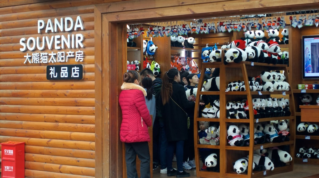 Giant Panda Breeding Research Base showing interior views, signage and shopping