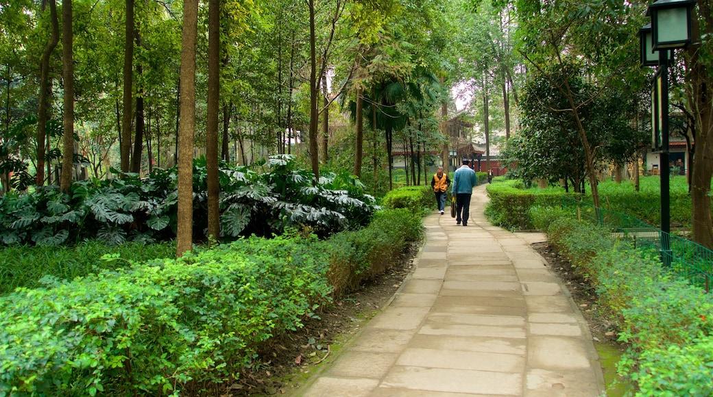 Monasterio Wenshu ofreciendo un parque