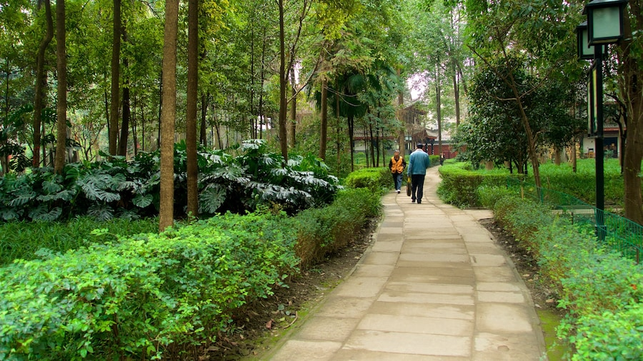 Wenshu Monastery featuring a garden