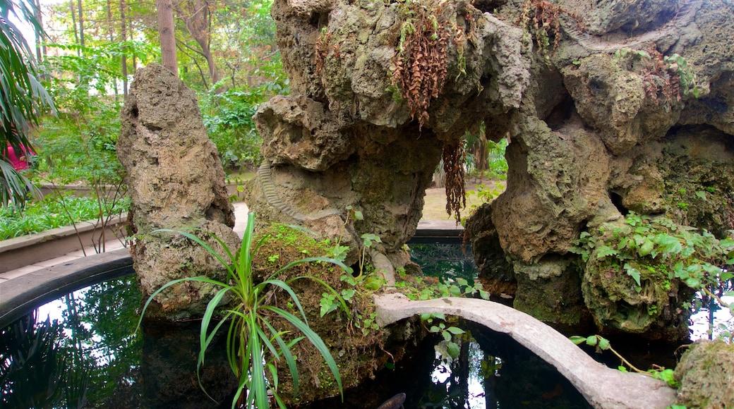 文殊院 呈现出 公園 和 池塘